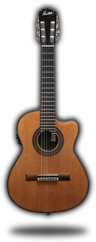Pimentel Guitars